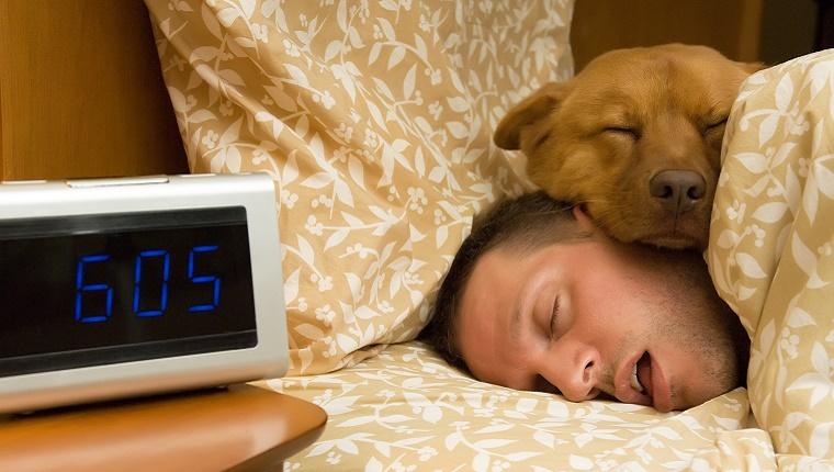 dog-sleeping-on-human